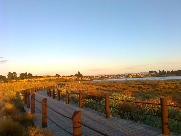 Caroline Bay Board Walk