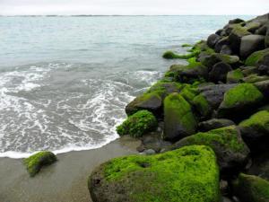 Shingle Beach Timaru Port