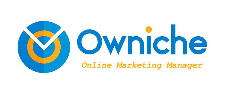 online writing niche